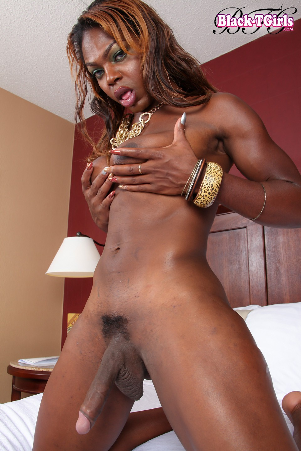 blackcocks shemale angel