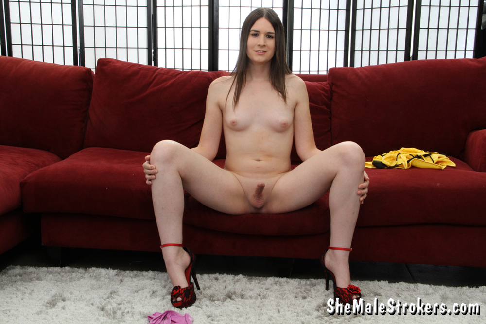 Shemale Strokers Guest 104